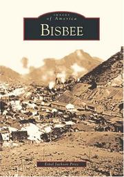 Bisbee by Ethel Jackson Price