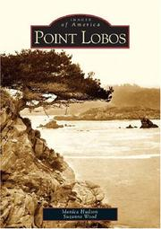 Point Lobos by Monica Hudson