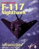 Lockheed F-117 Nighthawk by Bill Holder