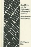 Small Firms and the Environment in Developing Countries PDF
