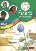 Bible discover and colour PDF