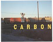 Carbon/Book With Insert PDF
