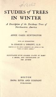 Studies of trees in winter by Annie Oakes Huntington