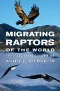 Migrating Raptors of the World by Keith L. Bildstein