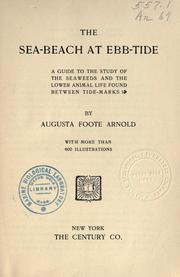 The sea-beach at ebb-tide by Augusta Foote Arnold