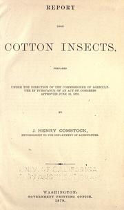 Report upon cotton insects PDF