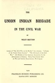 Cover of: The Union Indian Brigade in the Civil War by Wiley Britton