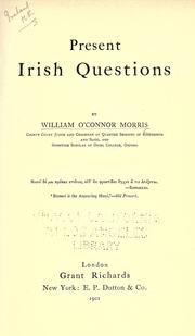 Present Irish questions PDF