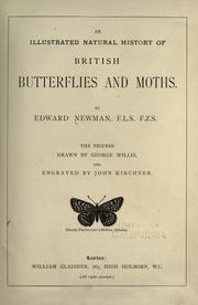An illustrated natural history of British butterflies and moths by Newman, Edward