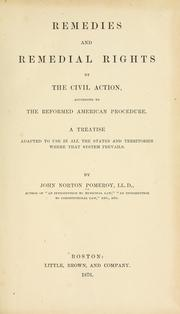 Remedies and remedial rights by the civil action, according to the reformed American procedure by Pomeroy, John Norton