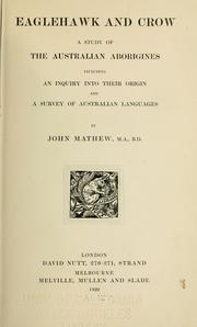 Eaglehawk and crow by Mathew, John.