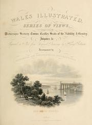 Wales illustrated, in a series of views, comprising the picturesque scenery, towns, castles, seats of the nobility & gentry, antiquities, &c PDF