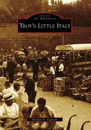 Troy&#39;s Llittle Italy by Michael A. Esposito