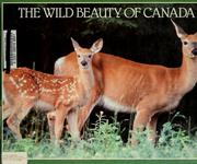 Cover of: The wild beauty of Canada by Rupert Matthews