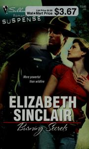 Cover of: Burning secrets by Elizabeth Sinclair