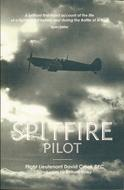 Spitfire pilot by David Moore Crook, D. M. Crook