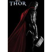 Thor Junior Novel