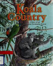 Koala Country by Deborah Dennard