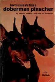 How to raise and train a Doberman pinscher by Natalie Stebbins