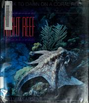 Night reef PDF