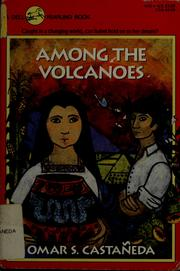 Among the volcanoes PDF