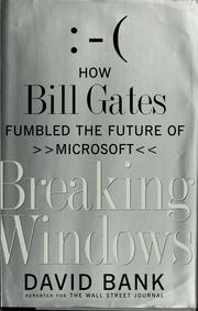 Breaking Windows by David Bank