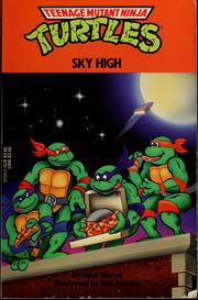 Cover of: SKY HIGH (Teenage Mutant Ninja Turtles) by Dave Morris