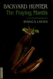 Cover of: Backyard hunter by Bianca Lavies