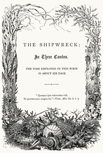 The shipwreck by Falconer, William