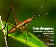 Grasshopppers of Northwest South America, A Photo Guide, Vol. 1 - The Western Fauna by Juan Manuel Cardona Granda