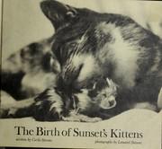The birth of Sunset's kittens PDF