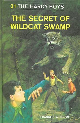 Download The secret of Wildcat Swamp