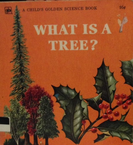 Download What is a tree?