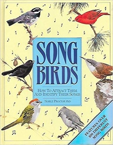 Download Songbirds