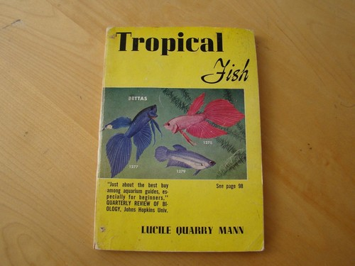 Download Tropical Fish