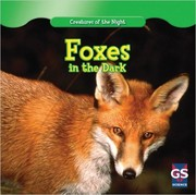 Foxes in the dark
