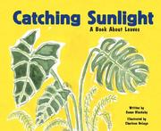 Cover of: Catching Sunlight by