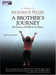 A Brother's Journey PDF