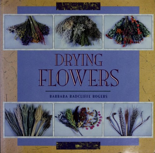 Download Drying flowers