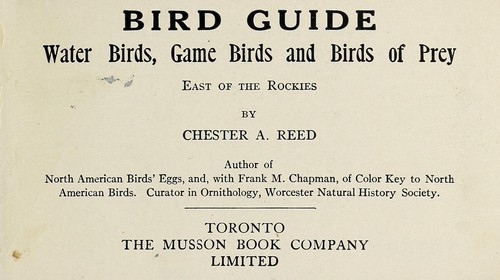Bird guide …