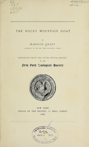 The Rocky Mountain goat