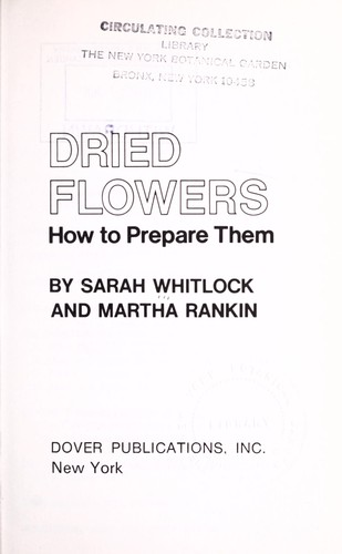 Download Dried flowers