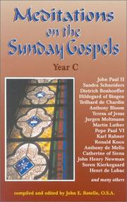 Meditations on the Sunday Gospel by John E. Rotelle