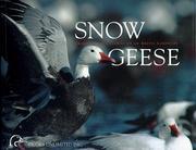 Snow Geese PDF