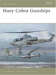 HueyCobra Gunships by Chris Bishop