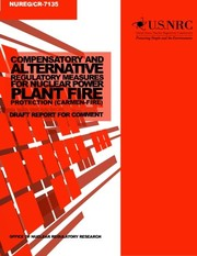 Compensatory and Alternative Regulatory Measures for Nuclear Power Plant Fire Protection