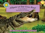 Alligator at Saw Grass Road)