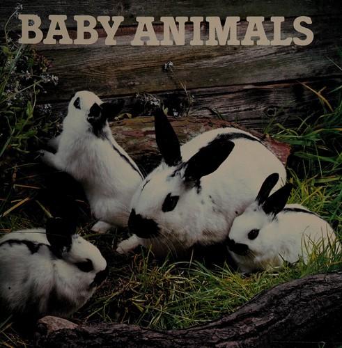Animal Photo Book-Baby Animals