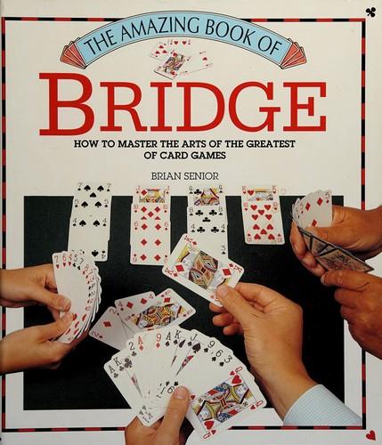 Bridge - The Amazin Book