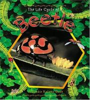 Christmas Beetle Life Cycle | RM.